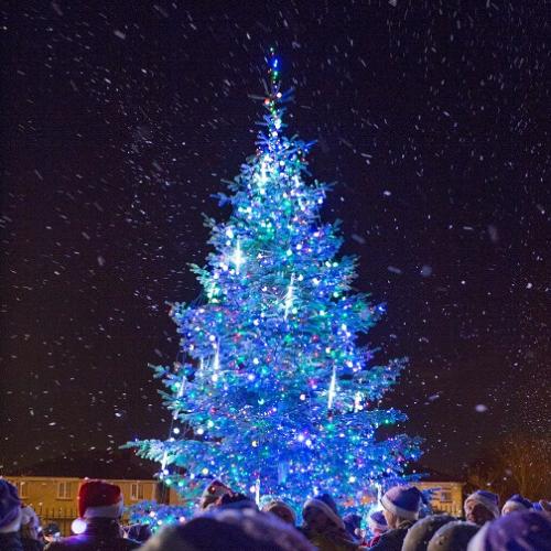 christmas tree lights ireland