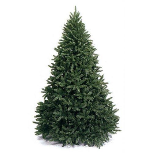 Traditional Christmas Trees